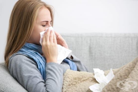 12 съществени разлики между обикновената настинка и грипа - изображение