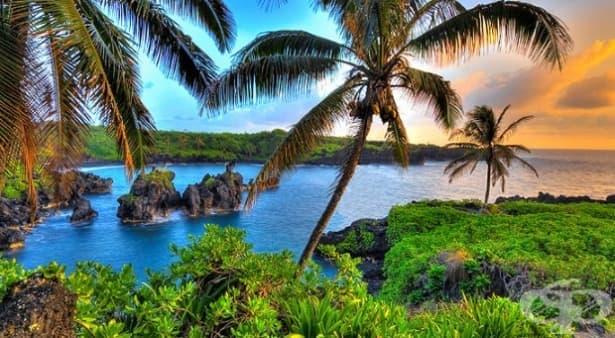 5 неудобни истини за живота в Хаваи - изображение