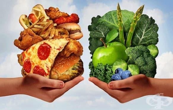 15 интересни факта относно храната, които никога не сте чували преди - изображение