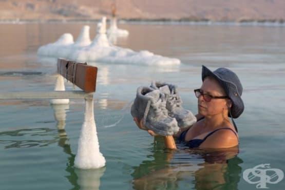 Творец потапя стари вещи в Мъртво море, вдъхвайки им нов живот - изображение