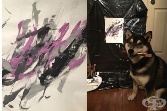 Хънтър - кучето, което рисува - изображение