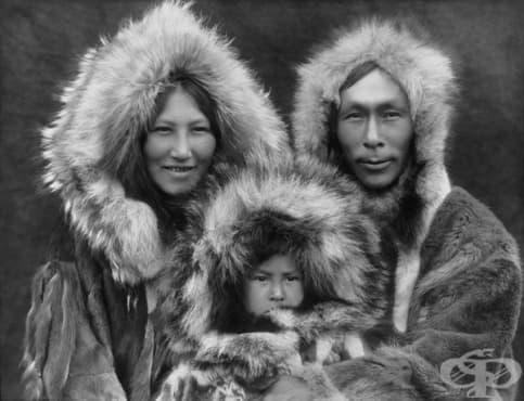 10 интригуващи факта за инуитите - изображение