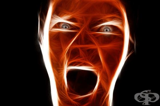 Изследователи потвърдиха - ниските хора са по-агресивни - изображение