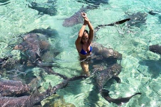 Инстаграм модел е нападнат от акули докато позира на Бахамите - изображение