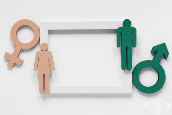 Жените, които упражняват контрол върху живота си, са в по-добро здраве  - изображение