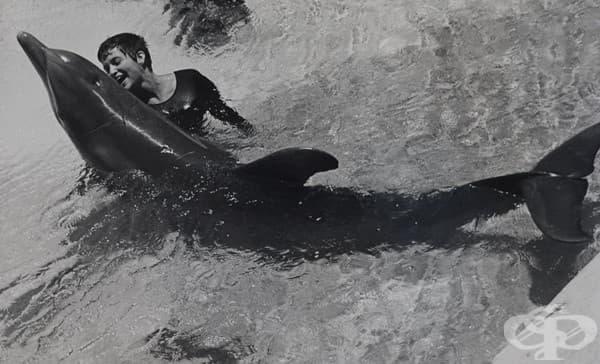 Невъзможна любов: Как делфин се влюбва в жена по време на експеримент на НАСА - изображение