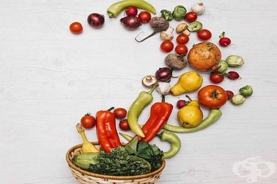 Вижте как и къде растат плодовете и зеленчуците, преди да бъдат откъснати  - изображение