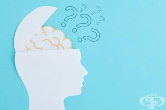 Какво става с мозъка, когато се оплаквате - изображение