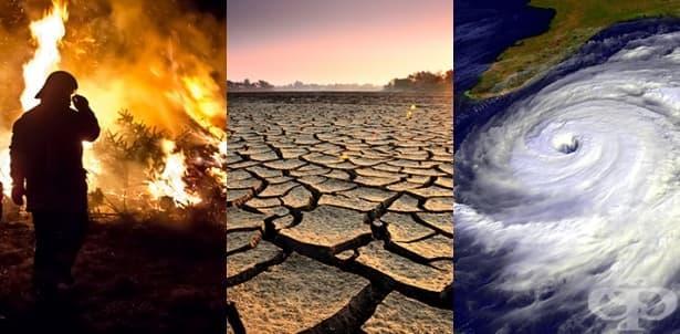 Кои са страните, които ще преживеят последствията от климатичните промени? - изображение