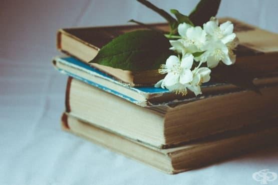 5 класически романа, които всеки трябва да прочете - изображение