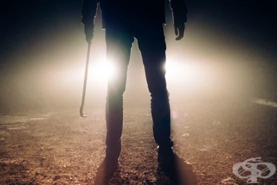 Кое е първо: убийството или романът - изображение