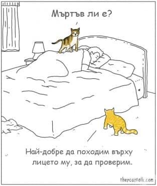 Ако животните можеха да говорят (комикси от Джими Крейг) - изображение