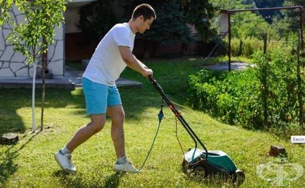 Да косиш трева в помощ на другите: История за съвременните герои - изображение