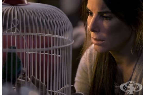 """Критика и рецензии за новия филмов хит – """"Кутия за птици"""" - изображение"""