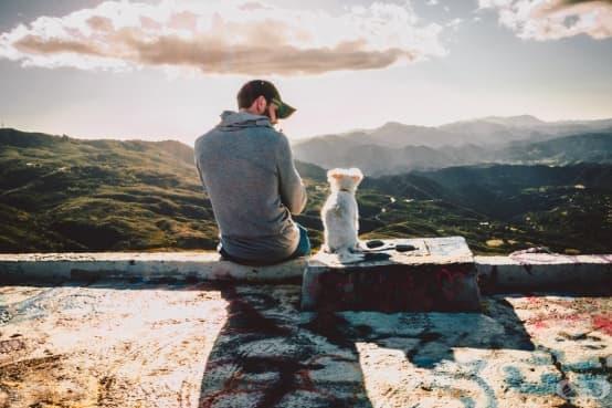 Една човешка година не се равнява на седем кучешки години - изображение