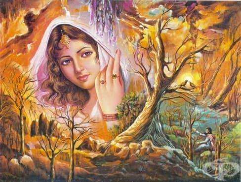 Любовта е в очите на влюбения – притча за Меджнун, Лейла и падишаха - изображение
