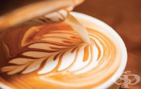 """Лате арт – всичко за изкуството да """"рисуваш"""" с млечната пяна на кафето /снимки и видео/ - изображение"""
