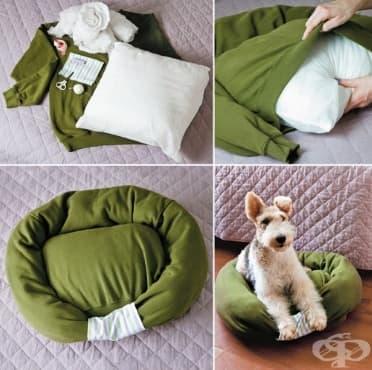 Как да си направим легло за домашен любимец от стара блуза - изображение