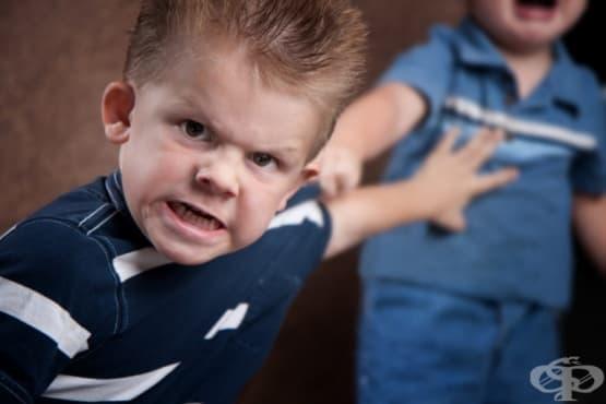 Изследване показва, че децата родени втори е по-вероятно да станат престъпници - изображение