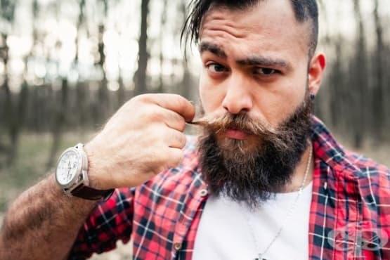 Мъж с брада има повече микроби, отколкото куче - изображение
