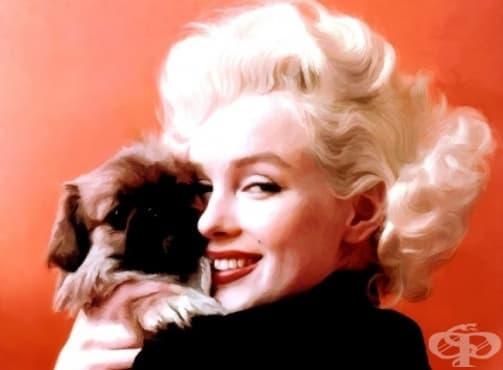 Нека си спомним за Мерилин Монро – вечната, непреходната, неповторимата… - изображение