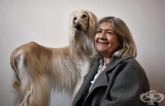 Италиански дизайнер създава облекла за кучета, идентични с тези на техните собственици - изображение