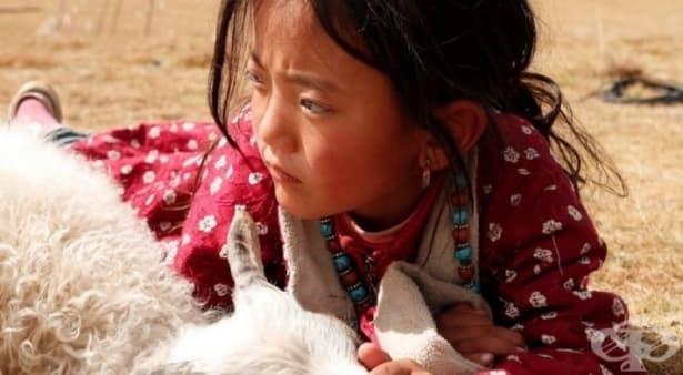 4 етапа на отглеждане на деца според тибетската мъдрост - изображение
