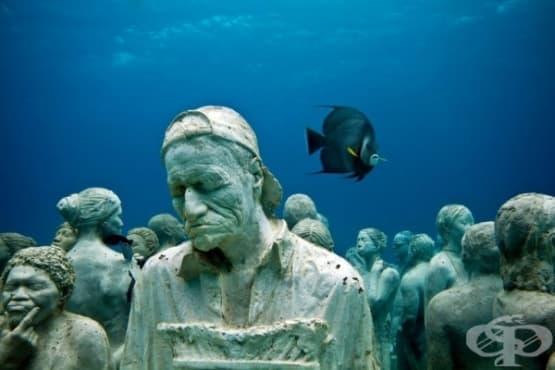 Лапидариум на дъното на океана - изображение