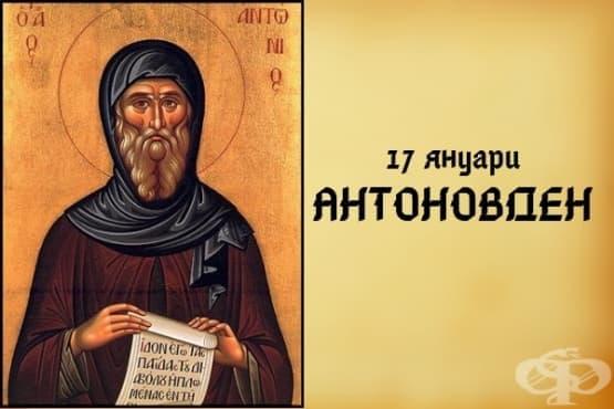 На 17 януари празнуваме Антоновден - изображение
