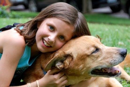 Най-подходящите породи кучета за домашен любимец - изображение