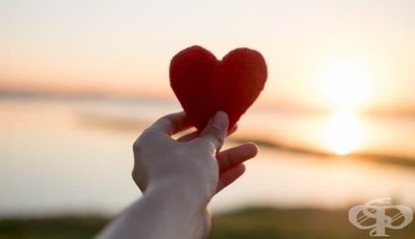 Най-същественото е невидимо за очите: многоликите проявления на любовта  - изображение