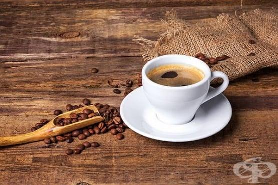 Kopi Luwak: най-скъпото кафе в света! - изображение