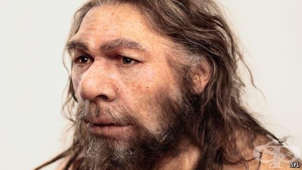 Наследени от неандерталците гени са причината за някои заболявания у съвременния човек - изображение