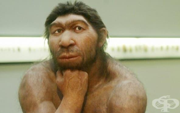 Пушите ли? Вероятно за това са виновни неандерталците - изображение