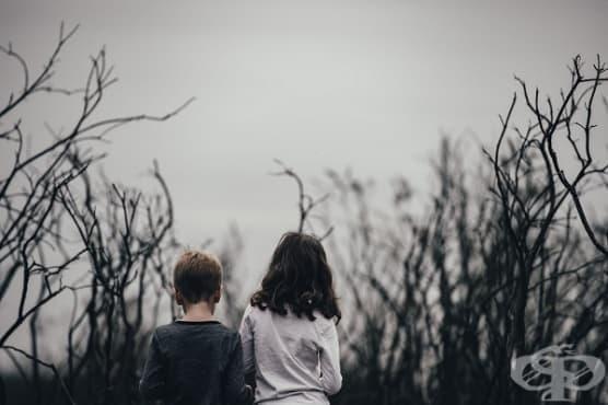 Притча: Незаменимата връзка между брат и сестра - изображение