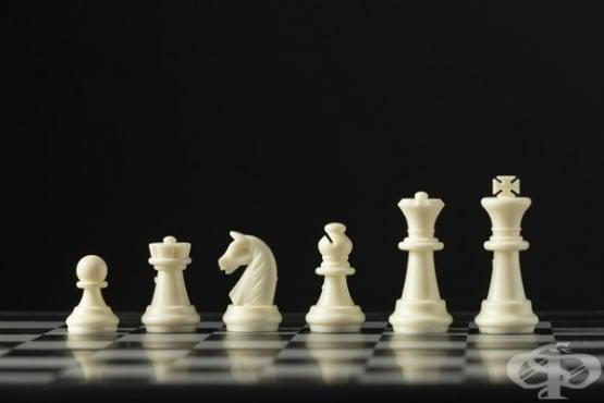 Незрящата Джесика Лаузър - шампион по шах  - изображение