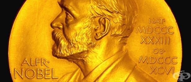 Зад кулисите на Нобеловите награди – една история за динамит, любов и дискриминация - изображение