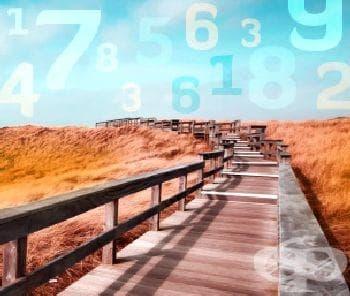 Нумерология: Какъв е жизненият път на живота ви? - изображение