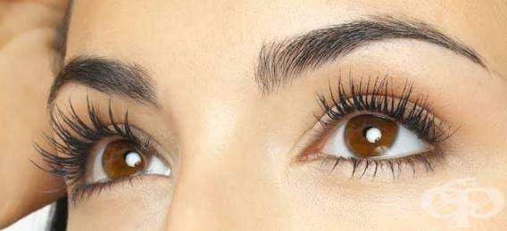 12 уникални факта за човешките очи - изображение