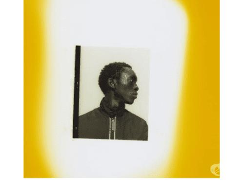 Уилсън Ориема: моделът, който осъжда консуматорството - изображение