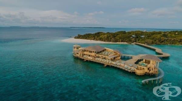 Работата на мечтите съществува: луксозен малдивски курорт търси книжар - изображение