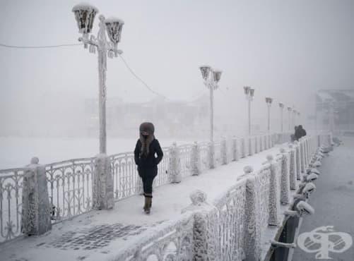 Как изглежда животът в най-студеното село в света, където температурата достига –71.2°C? - изображение