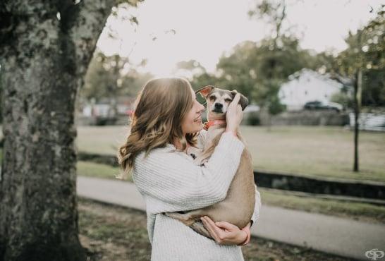 Основните въпроси, които касаят собствениците на домашен любимец - изображение