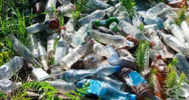Пластмаса, направена от растения: да, не се шегуваме, това е бъдещето - изображение