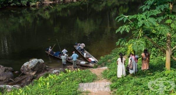 Племето Цимане – общността с най-здравите сърца в света - изображение