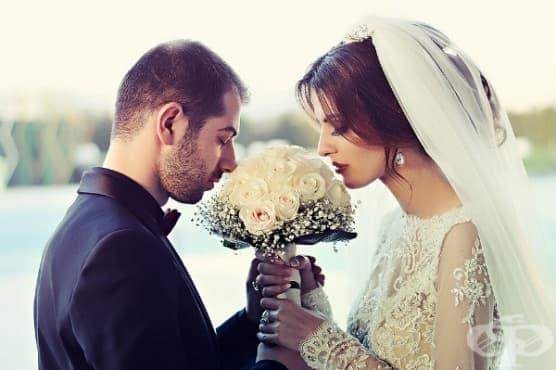 Учени: По-късен брак за по-трайно щастие - изображение
