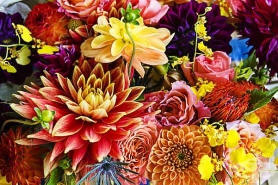 Подарете перфектното цвете според месеца на раждане - изображение