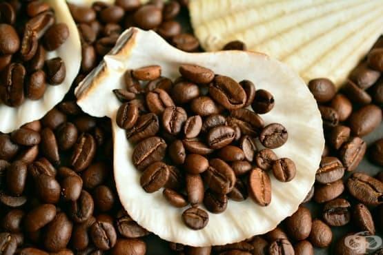 Притча: Кафето от Бог - изображение