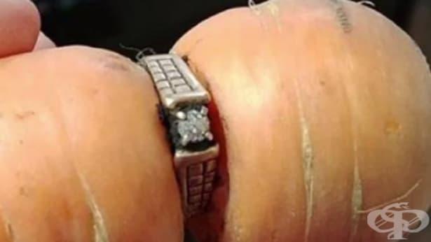 Изгубен в градината:  Жена намери годежния си пръстен увит около морков - изображение