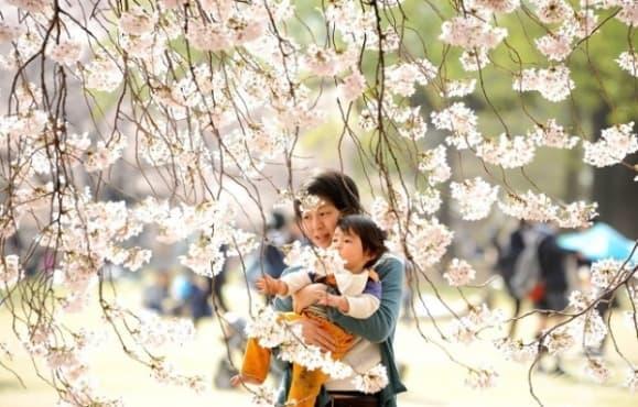 5 правила за възпитание от японските родители - изображение